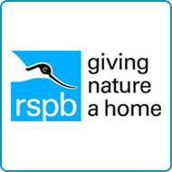 Find out more about donating your car to RSPB