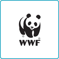 Find out more about donating your car to WWF