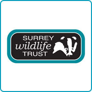 Find out more about donating your car to Surrey Wildlife Trust