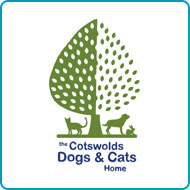 Find out more about donating your car to Cotswolds Dogs and Cats Home