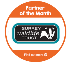 Find out about Surrey Wildlife Trust, our Partner of the Month