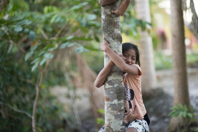 Girl climbs a tree in the rainforest. Photo from Cool Earth charity