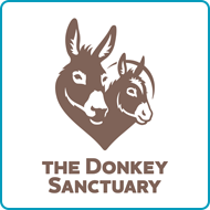 Find out more about donating your car to The Donkey Sanctuary