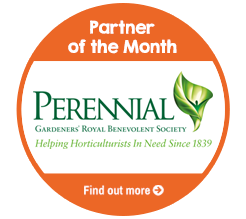 Find out about Partner of the Month for April, Perennial