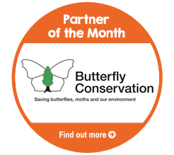 Find out about Partner of the Month for August, Butterfly Conservation!